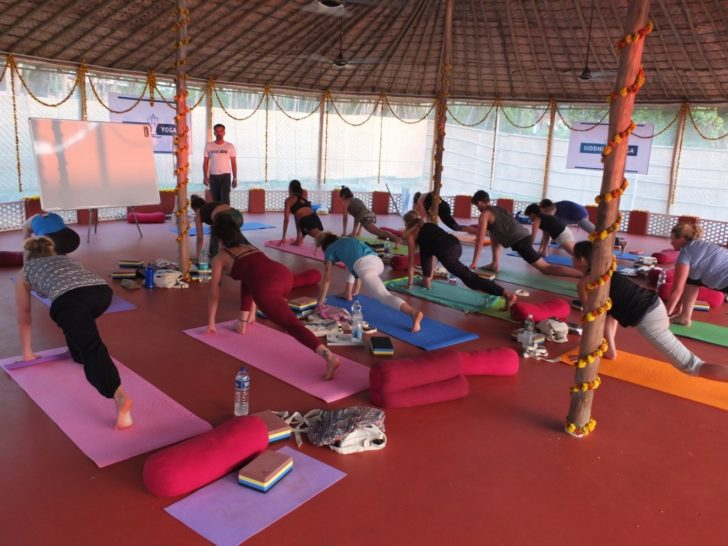 yoga-rishikesh-training