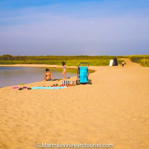 Long Point Wildlife Beach